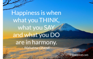 Ghandi - Harmony think say do